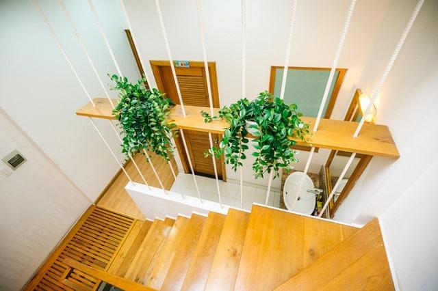 Cây xanh được kiến trúc sư bố trí khéo léo nên giúp không gian ngôi nhà trở nên tinh tế hơn