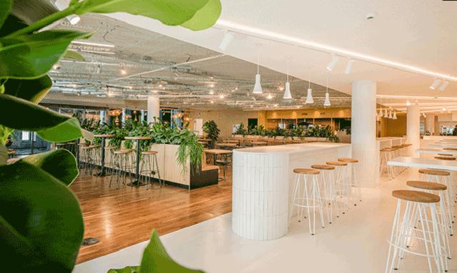 Nhà hàng tận dụng tông màu chủ đạo là trắng kết hợp với hệ thống cây xanh bắt mắt tạo không gian tinh tế