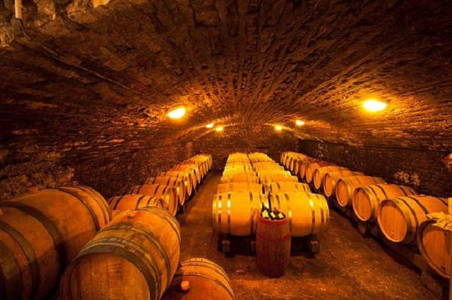 33 Mẫu Thiết Kế Hầm Rượu Đẹp Ấn Tượng Nhất 13