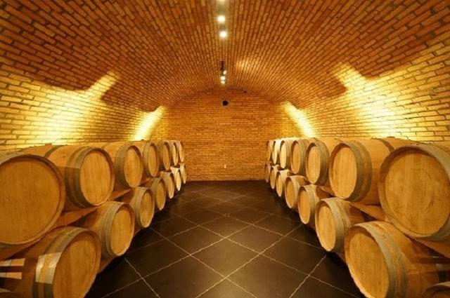 33 Mẫu Thiết Kế Hầm Rượu Đẹp Ấn Tượng Nhất 23