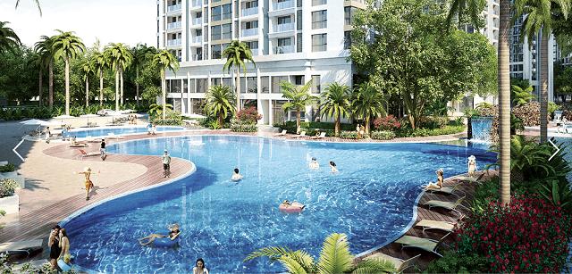 33 mẫu thiết kế hồ bơi đẹp ấn tượng nhất 8