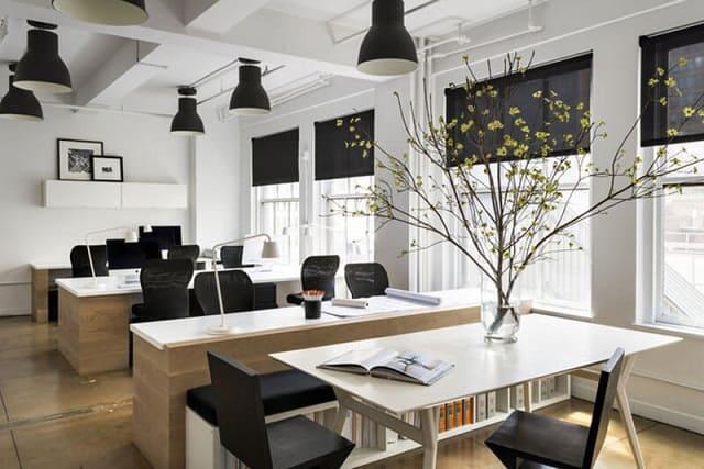 Phòng làm việc sử dụng gam màu trắng chủ đạo cùng yếu tố cây xanh tạo sự thân thiện, tươi mát cho không gian